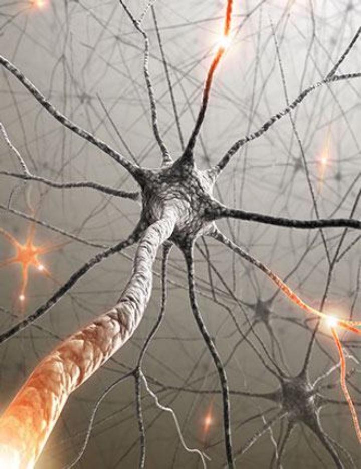 Sclérose en plaques - que faire